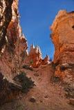 Desert landscape. Of Utah, United States Royalty Free Stock Image