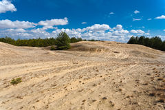 Desert landscape. Stock Photos