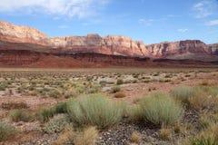 Desert landscape Royalty Free Stock Images