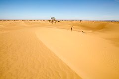 Desert landscape. At Erg Chigaga in the South of Morocco. Erg Chigaga near M'hamid is one of the Morocco's Saharan erg, large dunes formed by wind-blown sand Stock Photos