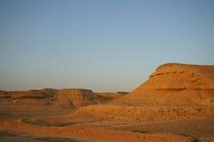Desert landscape. A tree in Arava desert, Israel on sunrise Royalty Free Stock Photos