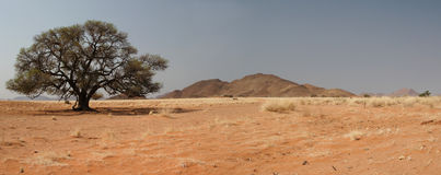 Desert Landscape. Panoramic landscape in the Tiras mountains in Namibia stock image