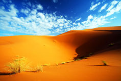 Desert landscape. At Erg Chebi, Morocco, Africa stock image