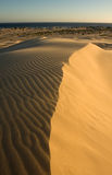 Desert landscape. Stockton sand dunes in Anna Bay, NSW, Australia. Beautiful sand ripples and curves with dramatic shadows royalty free stock photography