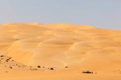 Desert landscape in Abu Dhabi Stock Photography
