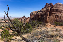 Desert landscape, Arches National Park Royalty Free Stock Photos