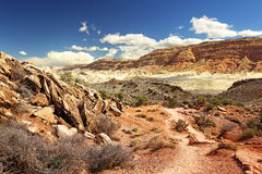 Desert landscape in arches national park, utah Royalty Free Stock Photos