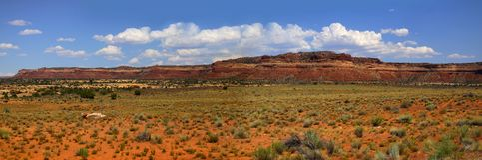 Desert landscape in the Arizona stock image