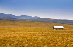 Desert landscape in Arizona Stock Images