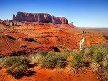 Desert Landscape in Arizona, Monument Valley. Orange-red rocks - buttes and plants in Monument Valley, Desert Landscape Arizona, US stock photos