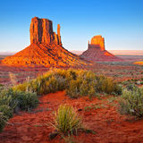 Desert Landscape in Arizona, Monument Valley. Orange-red rocks - buttes and plants in Monument Valley, Desert Landscape Arizona, US stock image