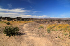 Desert Landscape. As Viewed From Amboy Crater in the State of California stock photos