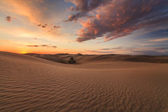 Desert landscape on the background of clouds. The Gobi Desert. Mongolia Royalty Free Stock Images