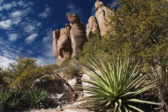 Desert landscape. Chiricahua National Monument, southern Arizona Stock Photography