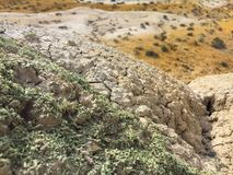 Desert landscape closeup. Martian landscape on Earth. Altai. Russia royalty free stock photos