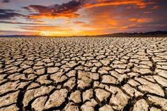 Desert landscape with cracked earth Royalty Free Stock Images