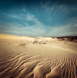 Desert landscape with dead plants in sand dunes. Global warming Royalty Free Stock Photo