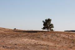 Desert landscape with dunes. And rocks, Sahara Desert, Tadrart, Algeria Stock Image