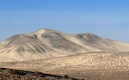 Desert landscape (Fuerteventura - Spain) Stock Photography