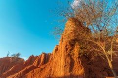 Desert Landscape in Golden Light Royalty Free Stock Image