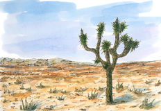Desert landscape with Joshua tree Yucca brevifolia. Ink and watercolor on rough paper stock illustration