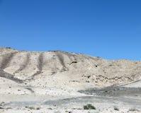 Desert. Landscape of Judean desert Israel Stock Photography