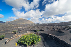Volcanic desert landscape, Lanzarote island - Timanfaya - Canary Islands - Spain Royalty Free Stock Photography