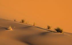 Desert landscape in Morroco Stock Image