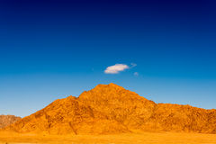 Desert landscape Stock Photography