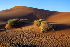 Desert landscape in Namibia Stock Images