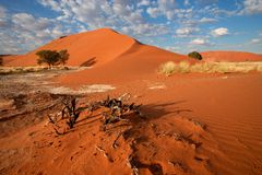 Desert landscape, Namibia Stock Photos