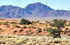 Desert Landscape - NamibRand, Namibia Stock Photo