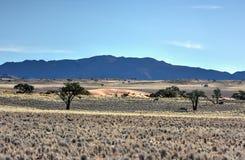 Desert Landscape - NamibRand, Namibia Royalty Free Stock Images