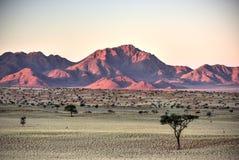 Desert Landscape - NamibRand, Namibia Royalty Free Stock Photos