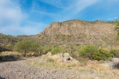 Desert landscape. Near Loreto, Baja California Mexico stock photography