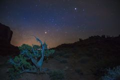Desert Landscape at night Royalty Free Stock Photo
