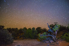 Desert Landscape at night Stock Image