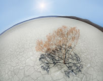 Desert landscape. Photographed on a Fisheye lens Stock Photography