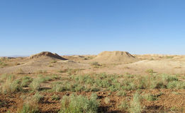 Desert landscape poor green vegetation Royalty Free Stock Photography