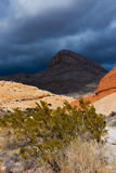 Desert landscape with rainy clouds in Nevada Royalty Free Stock Images