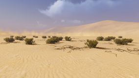 Desert landscape 1 Royalty Free Stock Photo