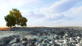 Desert landscape with rocks and trees concept background Royalty Free Stock Photography