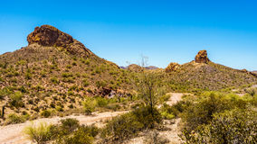 Desert Landscape and rugged Mountains in Tonto National Forest in Arizona, USA. Desert Landscape and rugged Mountains on a Hot Summer in Tonto National Forest stock photo