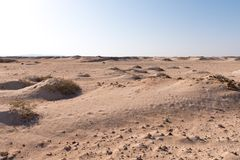 Desert landscape of Sahara Royalty Free Stock Photo