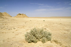 Desert landscape - Sahara, Tunisia Royalty Free Stock Photography