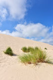 Desert. Landscape Slowinski National Park Poland Baltic sea Stock Photography