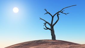 Desert landscape with sun and dead tree Royalty Free Stock Images