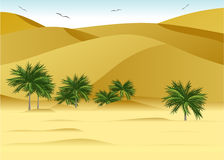 Desert. Royalty Free Stock Images