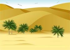 Desert. Royalty Free Stock Images