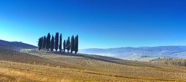 Desert landscape of Tuscany Royalty Free Stock Images